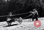 Image of German farmers Germany, 1944, second 12 stock footage video 65675020573