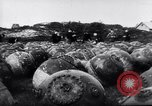 Image of naval mines Germany, 1944, second 1 stock footage video 65675020579