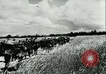 Image of German motorized columns Russia, 1942, second 2 stock footage video 65675020602