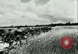 Image of German motorized columns Russia, 1942, second 4 stock footage video 65675020602