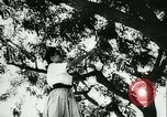 Image of Spanish girls Spain, 1944, second 8 stock footage video 65675020616