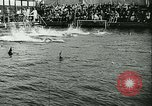 Image of Swimming meet Helsingor Denmark, 1942, second 12 stock footage video 65675020631