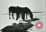 Image of Col Lucien Lippert Soviet Union, 1944, second 9 stock footage video 65675020641