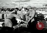 Image of Japanese laborers Chosin Reservoir Korea, 1950, second 1 stock footage video 65675020771