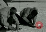 Image of Byrd Expedition Antarctica, 1929, second 1 stock footage video 65675020801