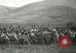 Image of Reindeer herding Point Barrow Alaska USA, 1915, second 8 stock footage video 65675020851