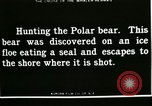 Image of Polar bear hunting Herschel Island Arctic Ocean, 1915, second 2 stock footage video 65675020856