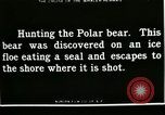 Image of Polar bear hunting Herschel Island Arctic Ocean, 1915, second 3 stock footage video 65675020856
