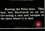 Image of Polar bear hunting Herschel Island Arctic Ocean, 1915, second 4 stock footage video 65675020856