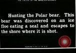 Image of Polar bear hunting Herschel Island Arctic Ocean, 1915, second 5 stock footage video 65675020856