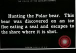 Image of Polar bear hunting Herschel Island Arctic Ocean, 1915, second 7 stock footage video 65675020856
