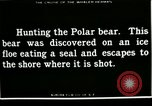 Image of Polar bear hunting Herschel Island Arctic Ocean, 1915, second 8 stock footage video 65675020856