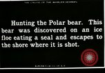 Image of Polar bear hunting Herschel Island Arctic Ocean, 1915, second 12 stock footage video 65675020856