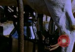 Image of Milk production United States USA, 1958, second 11 stock footage video 65675020868