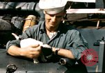 Image of Puppy in life preserver United Kingdom, 1944, second 1 stock footage video 65675020899