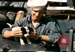 Image of Puppy in life preserver United Kingdom, 1944, second 3 stock footage video 65675020899