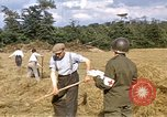 Image of French farmers France, 1944, second 4 stock footage video 65675020910