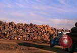 Image of log piles California United States USA, 1967, second 9 stock footage video 65675020971