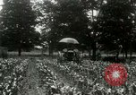 Image of Fordson tractor United States USA, 1920, second 11 stock footage video 65675021045