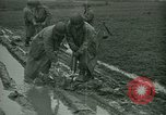 Image of United States Army Engineers Holland Netherlands, 1944, second 5 stock footage video 65675021124
