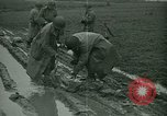 Image of United States Army Engineers Holland Netherlands, 1944, second 6 stock footage video 65675021124