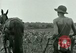 Image of Prisoner of War Camp Southern United States USA, 1944, second 4 stock footage video 65675021140