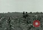 Image of Prisoner of War Camp Southern United States USA, 1944, second 11 stock footage video 65675021140
