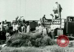 Image of German troops Russia, 1942, second 2 stock footage video 65675021215