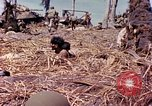 Image of Battle of Eniwetok Eniwetok Atoll Marshall Islands, 1944, second 6 stock footage video 65675021289