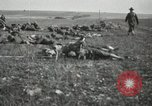 Image of 5th Marine Regiment France, 1918, second 11 stock footage video 65675021496