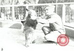 Image of wild animals Washington DC USA, 1921, second 1 stock footage video 65675021542
