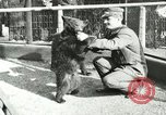 Image of wild animals Washington DC USA, 1921, second 3 stock footage video 65675021542