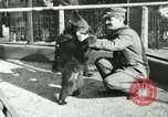 Image of wild animals Washington DC USA, 1921, second 4 stock footage video 65675021542