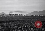 Image of cotton picking United States USA, 1941, second 9 stock footage video 65675021576