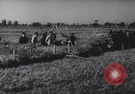 Image of Great Leap Forward China, 1963, second 3 stock footage video 65675021676