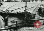 Image of Signal Corps United States USA, 1944, second 9 stock footage video 65675021729