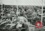 Image of Farming tobacco and fur in Denmark Denmark, 1942, second 11 stock footage video 65675021778