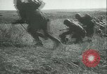 Image of Battle of Stalingrad Stalingrad Russia Soviet Union, 1942, second 8 stock footage video 65675021784
