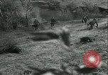 Image of Battle of Stalingrad Stalingrad Russia Soviet Union, 1942, second 11 stock footage video 65675021784