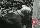 Image of German troops France, 1944, second 5 stock footage video 65675021804