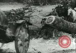 Image of German Army units France, 1940, second 5 stock footage video 65675021834