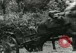 Image of German Army units France, 1940, second 12 stock footage video 65675021834