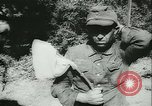 Image of Allied forces France, 1944, second 11 stock footage video 65675021889