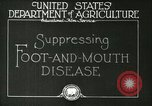 Image of foot and mouth disease United States USA, 1925, second 11 stock footage video 65675022110