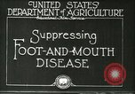Image of foot and mouth disease United States USA, 1925, second 12 stock footage video 65675022110