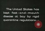 Image of foot and mouth disease United States USA, 1925, second 7 stock footage video 65675022111