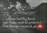 Image of foot and mouth disease United States USA, 1925, second 1 stock footage video 65675022112