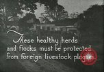Image of foot and mouth disease United States USA, 1925, second 3 stock footage video 65675022112