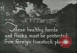 Image of foot and mouth disease United States USA, 1925, second 6 stock footage video 65675022112