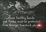 Image of foot and mouth disease United States USA, 1925, second 7 stock footage video 65675022112